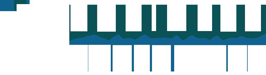Business Consultant Plus